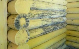 Защита древесины от влаги и гниения